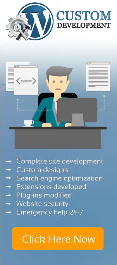 custom programming, application development and designing of Wordpress websites