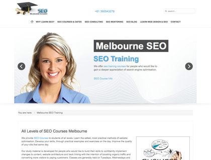 wordpress website sample as used by SEO company